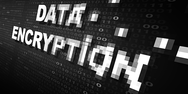 Military grade encryption on high performance network
